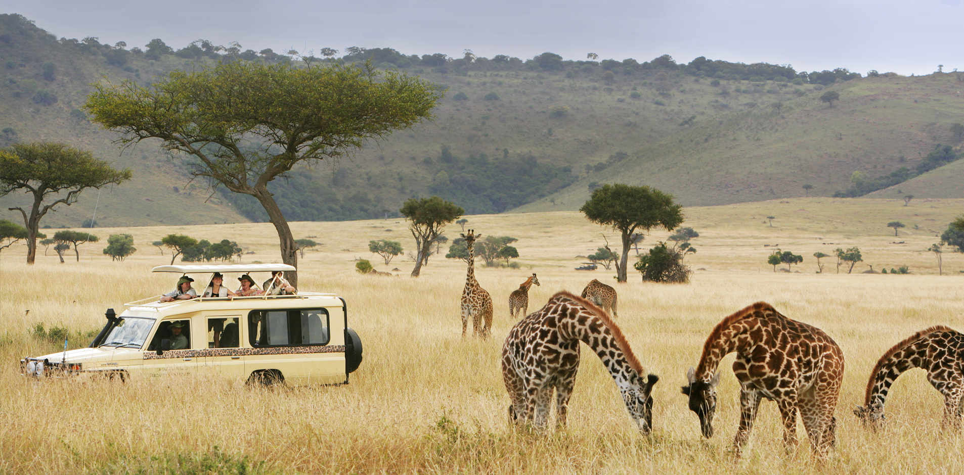 Gift of Travel Redemption - Micato Safaris