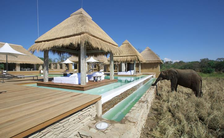 SOUTH AFRICAN SAFARI ADVENTURE